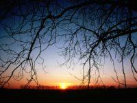 http://n.ziyouz.com/images/8.JPG